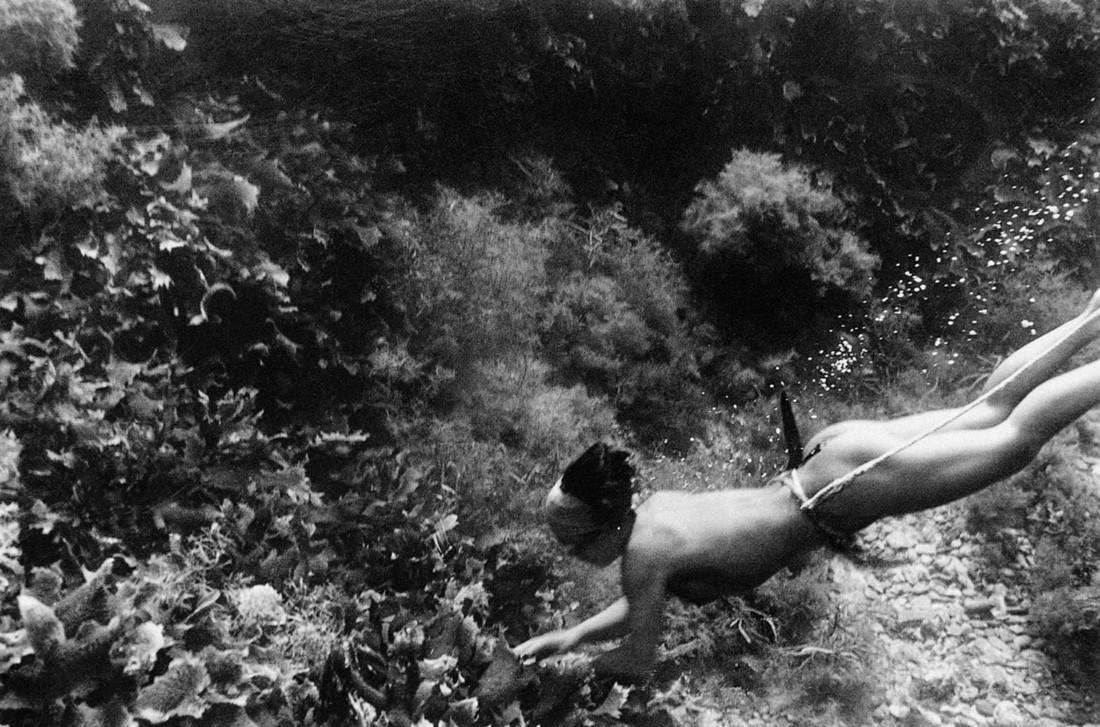 костомукша японские ныряльщицы за жемчугом фото предупреждаю, если выбираете