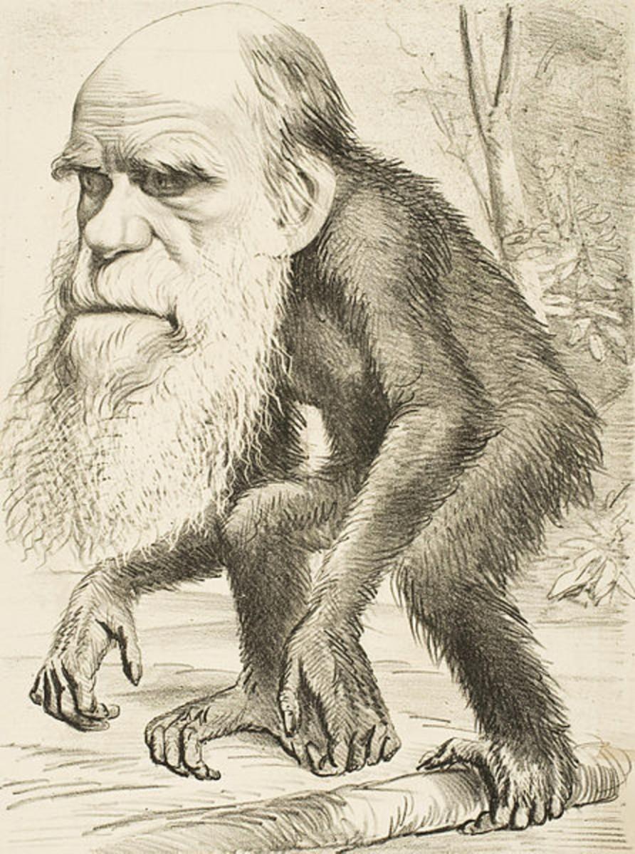 карикатура на Чарльза Дарвина