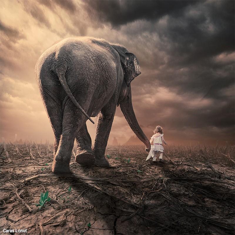 Слон и детство