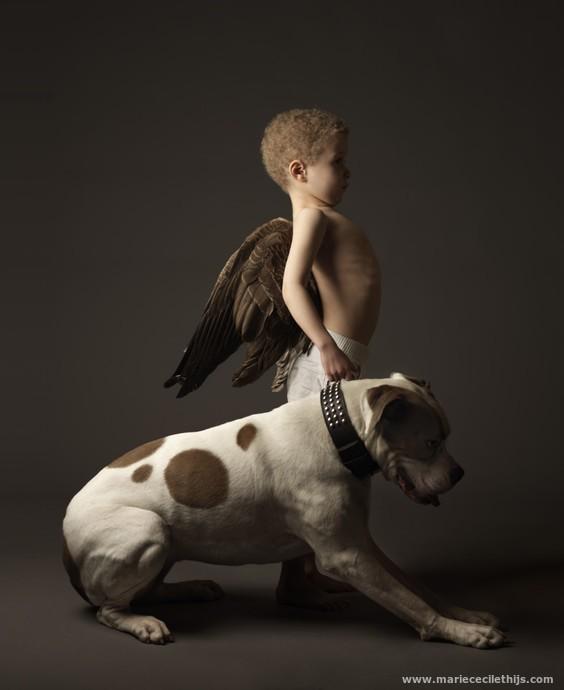 ангел с собакой