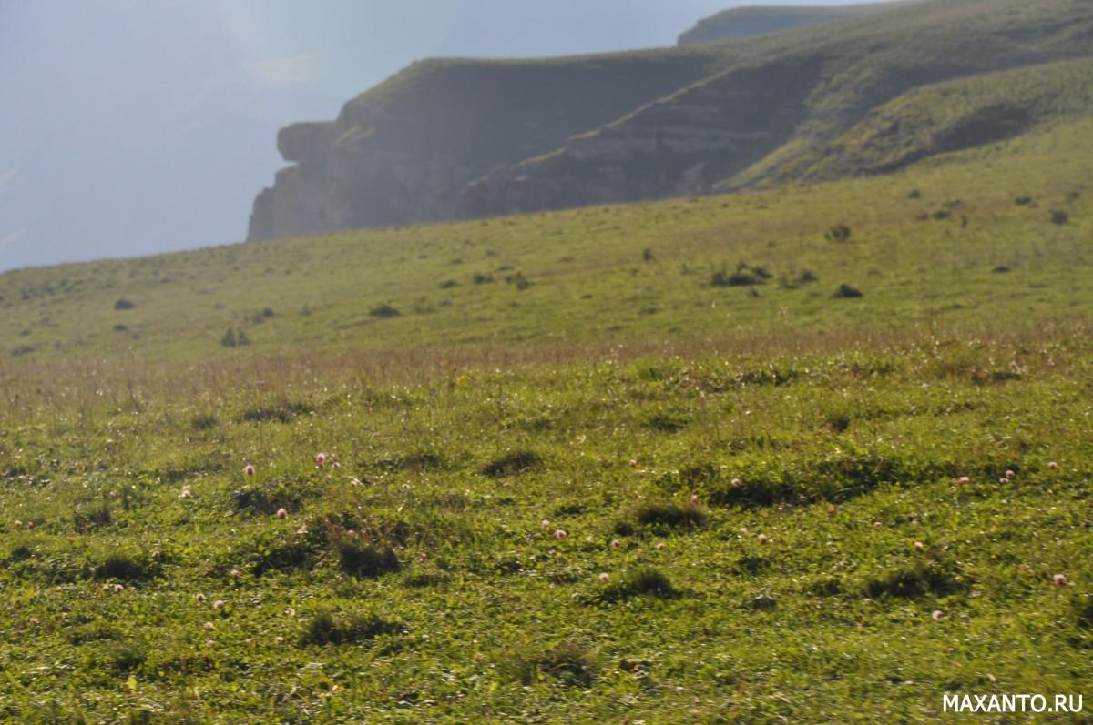 луга на плато Бермамыт